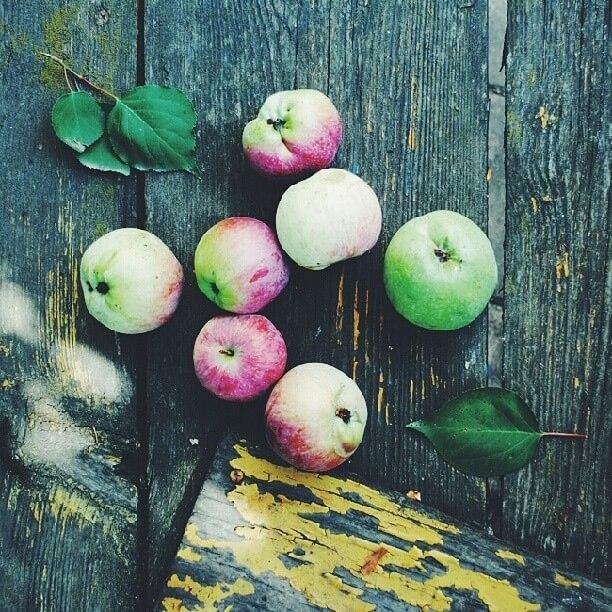 какие фрукты можно есть при высоком холестерине