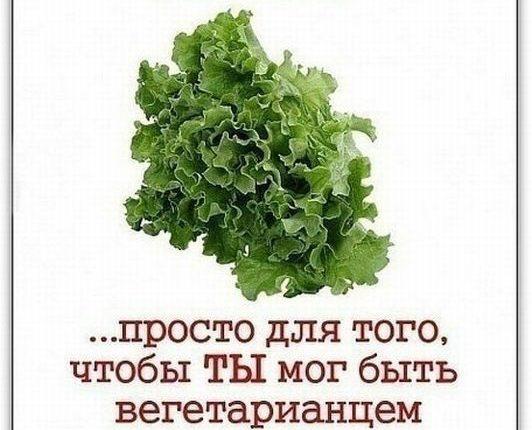 kak-trollit-vegetariancev-11