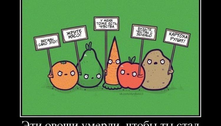 kak-trollit-vegetariancev-2