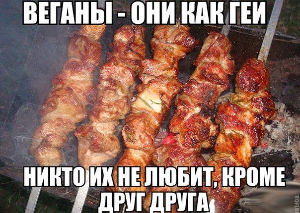 kak-trollit-vegetariancev-23