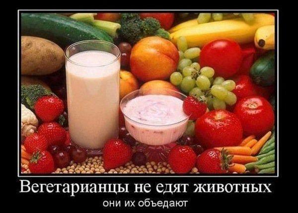 kak-trollit-vegetariancev-4